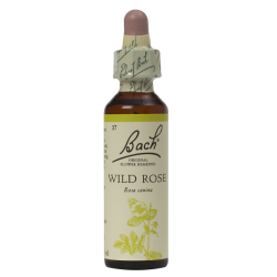 WILD ROSE 20ML ORIGINAL...