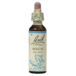 BEECH 20ML ORIGINAL BACH...